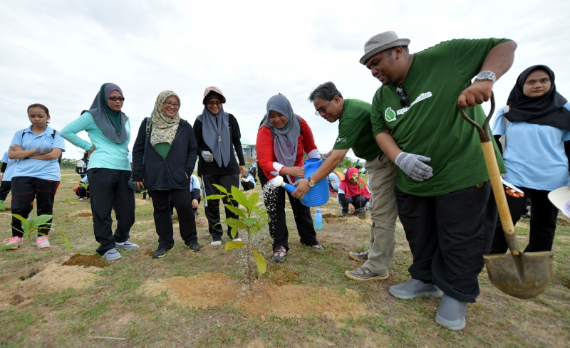 1,000 trees planted to fight against global warming
