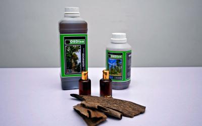 Nano-Inoculant formulation produces the best agarwood